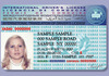 Drivers_license_for_foreigner