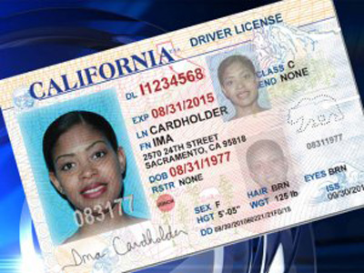 Image result for drivers license to illegals
